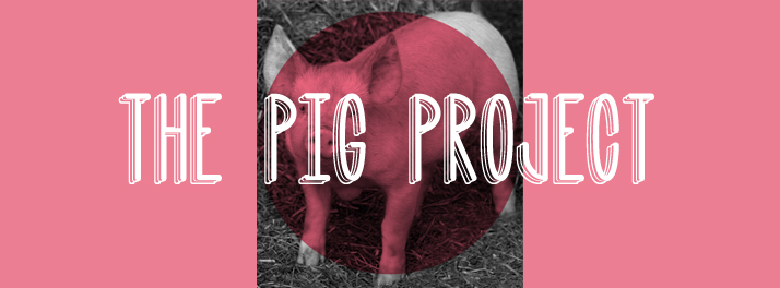 The Pig Project